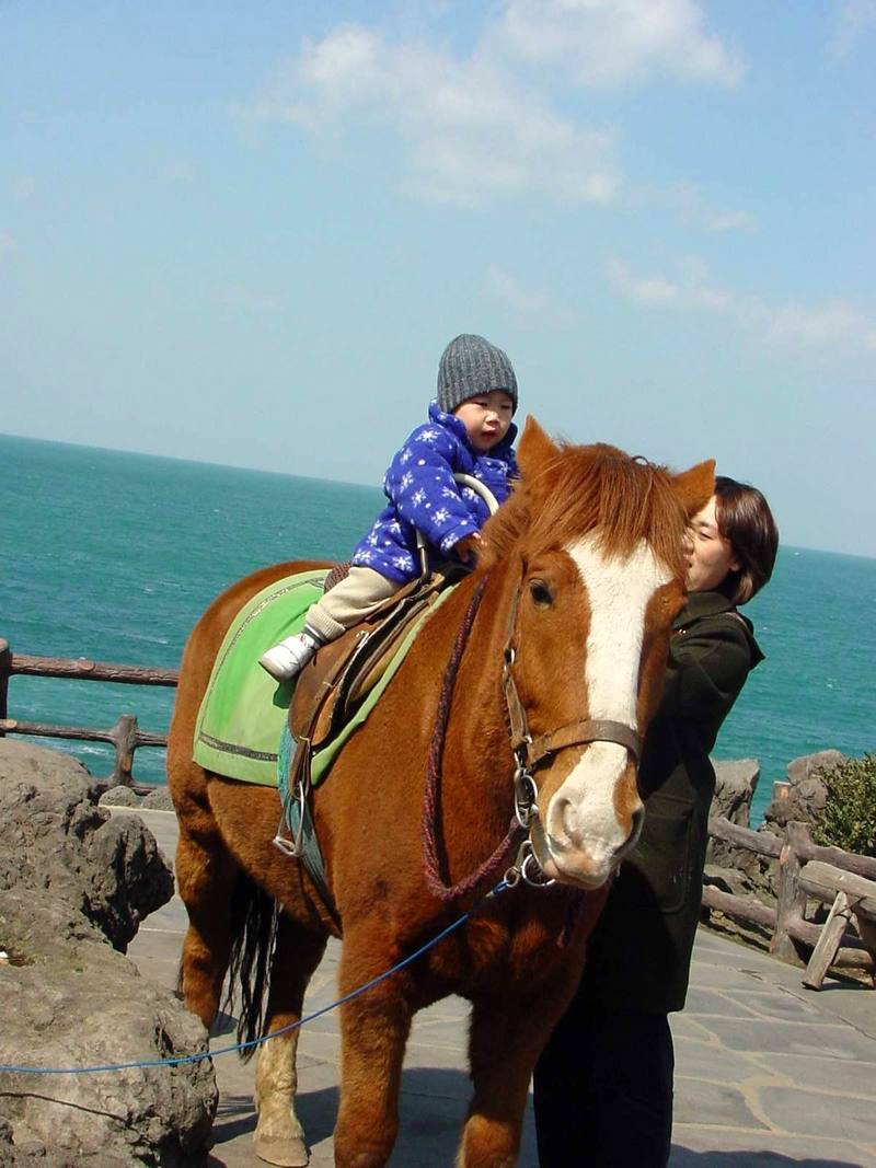 Cheju Pony and my son; DISPLAY FULL IMAGE.