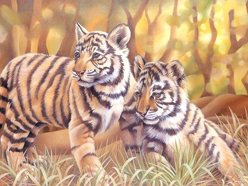 S4w-VanishingSpecies043-TigerCubs.jpg