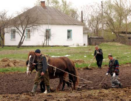 Horse Plough, Belarus [REUTERS 2005-04-24]; Image ONLY