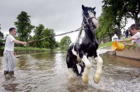 Appleby Horse Fair, Britain [REUTERS 2005-06-02]; Image ONLY