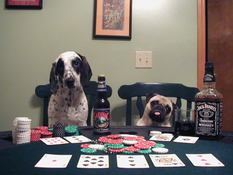 dogs playing poker.jpg