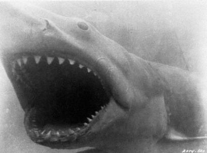 'Jaws' Author Peter Benchley, Great White Shark [AP 2006-02-12]; Image ONLY