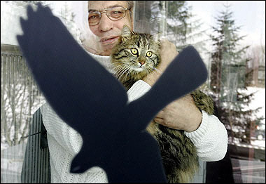 House Cat, Bird Flu, Germany [AFP 2006-03-02]; Image ONLY