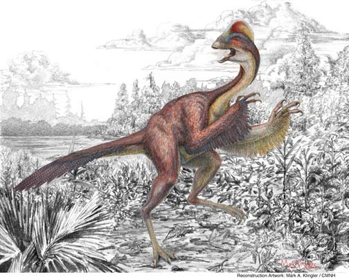 Dinosaur Tumor Studied for Human Cancer Clues [LiveScience 2006-04-03]; Image ONLY