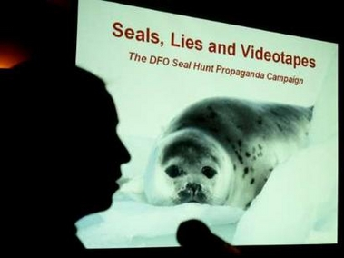 Seals, Lies and Videotapes [REUTERS 2006-04-03]; Image ONLY