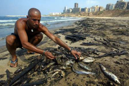 Israeli invasion of Lebanon, Dead Fishes, Lebanon [REUTERS 2006-08-06]; Image ONLY
