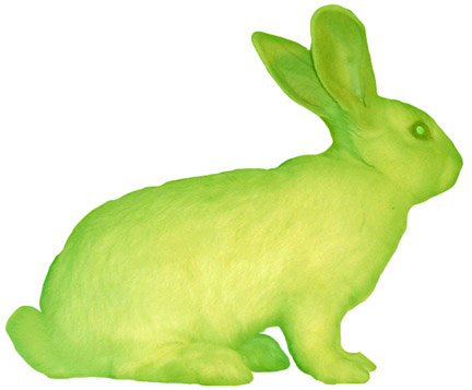 Alba, the fluorescent bunny; Image ONLY