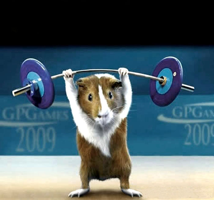 weightlifter mouse; Image ONLY