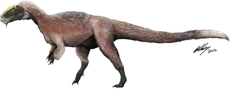 'Shaggy' Tyrannosaur Now World's Biggest Feathered Beast [LiveScience 2012-04-04]; DISPLAY FULL IMAGE.
