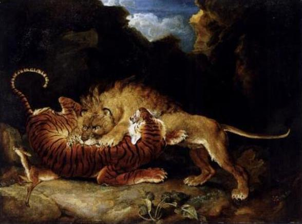 What Would Happen If a Lion Fought a Tiger? [LiveScience 2012-07-16]; Image ONLY