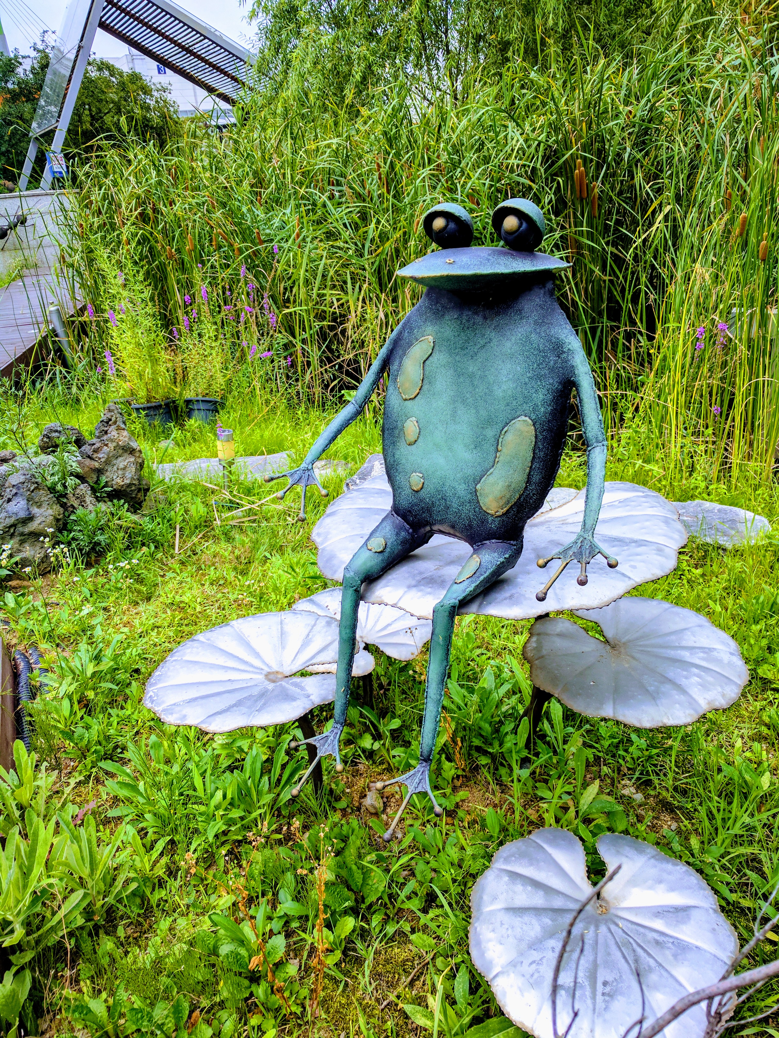 Iron Frog; Image ONLY