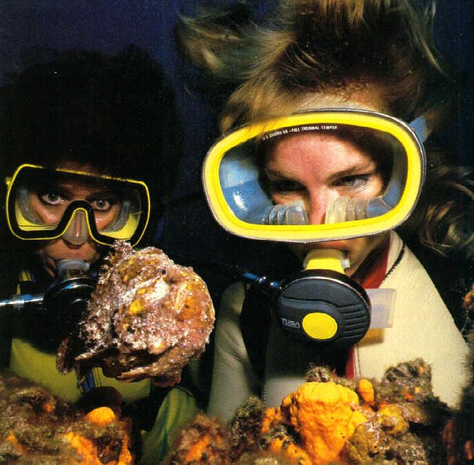 [Underwater Scuba Diving] Lady & Weird Fish; Image ONLY
