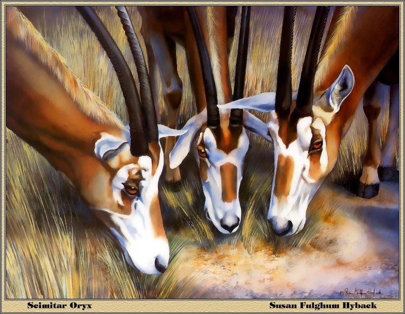 [Animal Art - Susan Fulghum Hyback] Scimitar-horned Oryx herd (Oryx dammah) <!--굽은뿔오릭스-->; Image ONLY