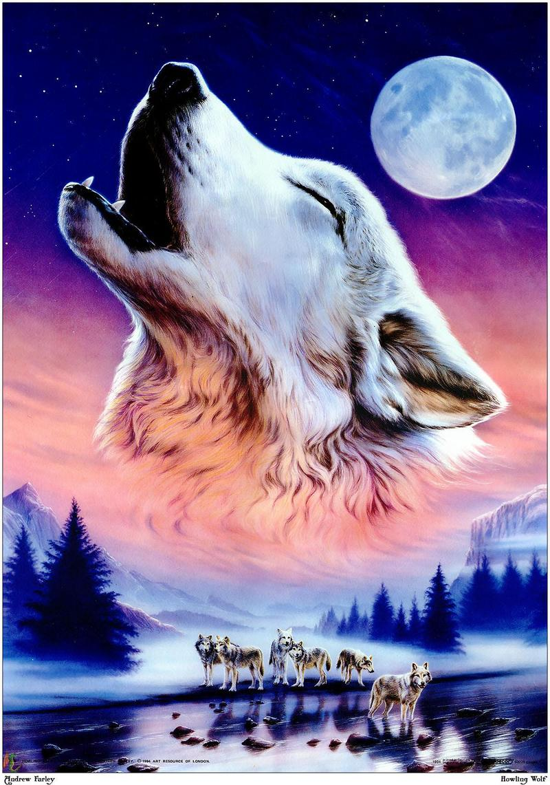 [Animal Art] Andrew Farley - Arctic Wolves; DISPLAY FULL IMAGE.