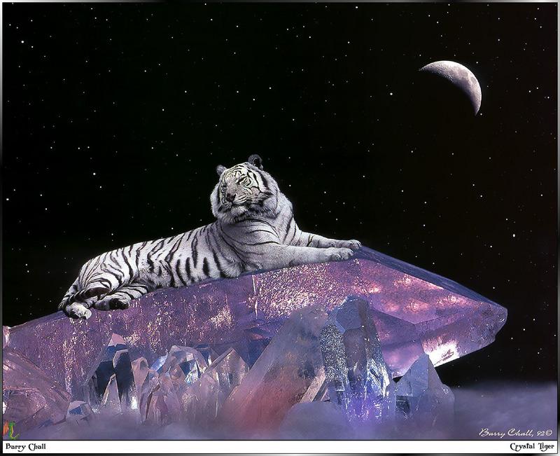 Fantasy white tiger