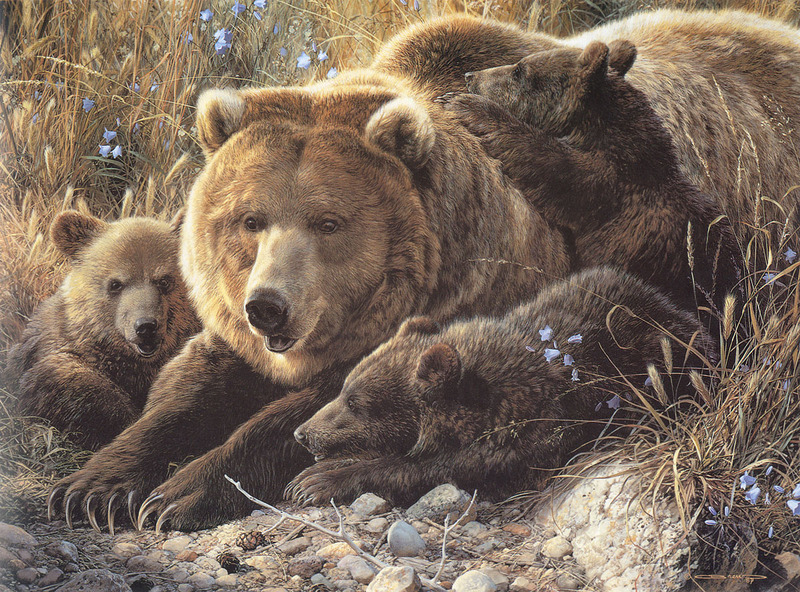 [Carl Brenders - Wildlife Paintings] Close to Mom (Brown Bears); DISPLAY FULL IMAGE.