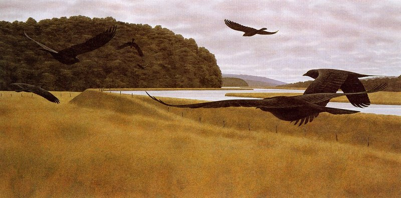 [EndLiss scans - Wildlife Art] Alex Colville - Seven Crows; DISPLAY FULL IMAGE.