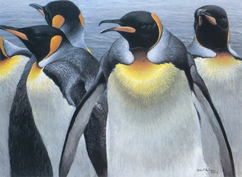 [FlowerChild scans] Painted by Robert Bateman, King Penguins; DISPLAY FULL IMAGE.