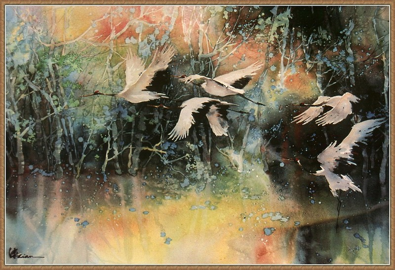 http://animal.memozee.com/ArchOLD-3/1113687952-m.jpg