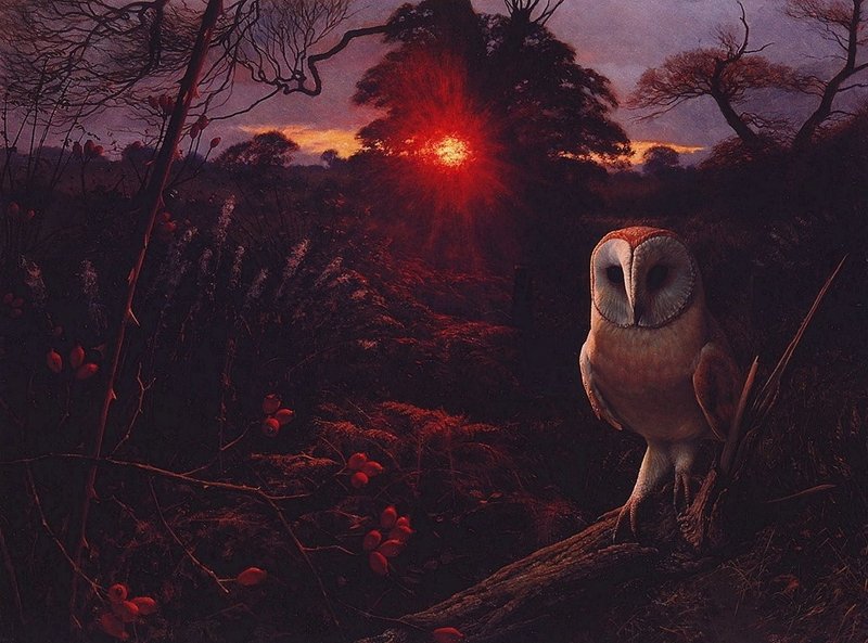 [LRS Art Medley] Raymond Booth, Barn Owl On A Winter Eve; DISPLAY FULL IMAGE.