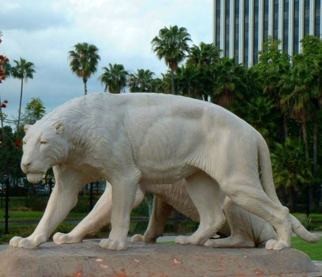 American Lion (Panthera leo atrox) - Wiki