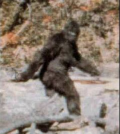 Bigfoot - Wiki; Image ONLY