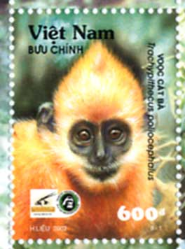 White-headed Langur (Trachypithecus poliocephalus) - Wiki; Image ONLY
