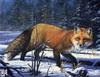 Catsmeat SDC 2003 - Weyer Wildlife Calendar 02: Red Fox - oil painting by R. W. Hedge