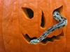 My Halloween photos (Sorry, no cats!) - Timber Rattlesnake