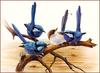 [Eric Shepherd's Beautiful Australian Birds Calendar 2002] Splendid Wren