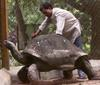 230 year old rare tortoise dies [ChinaDaily 2007-01-01]