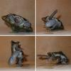 Turtle Tipping Tricks Revealed [LiveScience 2007-10-17]