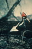 New Recordings of 'Extinct' Ivory-Billed Woodpecker [LiveScience 2011-04-29]