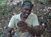 ...Endangered Snake Declared World's Rarest: Saint Lucia Racer (Liophis ornatus) [LiveScience 2012-