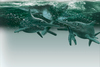 Image Gallery: Ancient Monsters of the Sea - Ichthyosaur [LiveScience 2012-10-17]