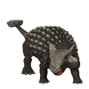 Ankylosaurus: Facts About the Armored Lizard [LiveScience 2012-12-04]