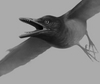Weird! This Odd, Ancient Bird Had Sharp Teeth [LiveScience 2013-01-07]
