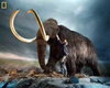 Image Gallery: Bringing Extinct Animals Back to Life [LiveScience 2010-03-15]