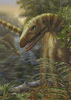 Gallery: The Diversity of Dino Ancestors [LiveScience 2013-04-29]