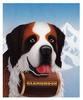 [zFox SDC Illustrations IS09] Ben Luce - Saint Bernard