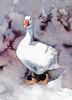 [zFox SDC Illustrations IS09] Rae Ecklund - Domestic Goose