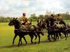 [Equus-SDC Horses] King's Troop of the Royal Horse Artillery