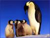 [PinSWD Scan - Taschen Calendar] Emperor Penguin And Chicks
