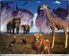 [Fafnir Scan - Barry Chall] 'Animal Sprit' - 1996 Calendar - Crystal-Valley (African animals)