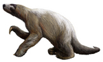 Nothrotheriops shastensis (Shasta ground sloth)