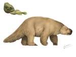Mylodon darwini (Darwin's ground sloth)