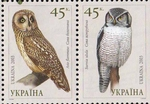 short-eared owl (Asio flammeus), northern hawk-owl (Surnia ulula)