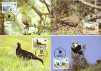 Azerbaijan Caucasian Black Grouse Set of 4 official Maxicards