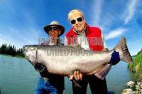 King Salmon fishing Kenai River , Alaska stock photo