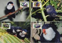 Aitutaki Tahitian Blue Lorikeet Set of 4 official Maxicards